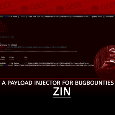 Zin Payload Injector for BugBounties written Go