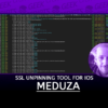 MEDUZA A More or Less Universal SSL Unpinning Tool for iOS