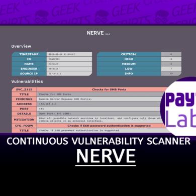 NERVE Continuous Vulnerability Scanner