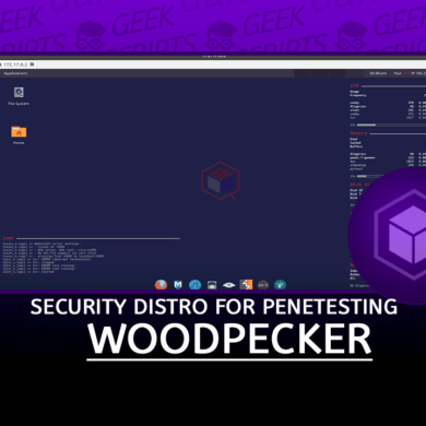 Woodpecker Custom Security Distro Remote Penetesting