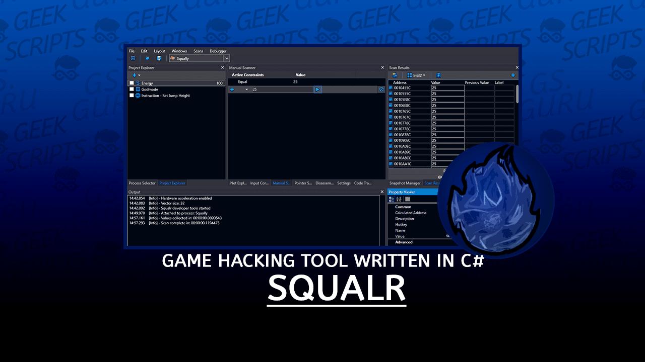 Squalr Game Hacking Tool Written in C#